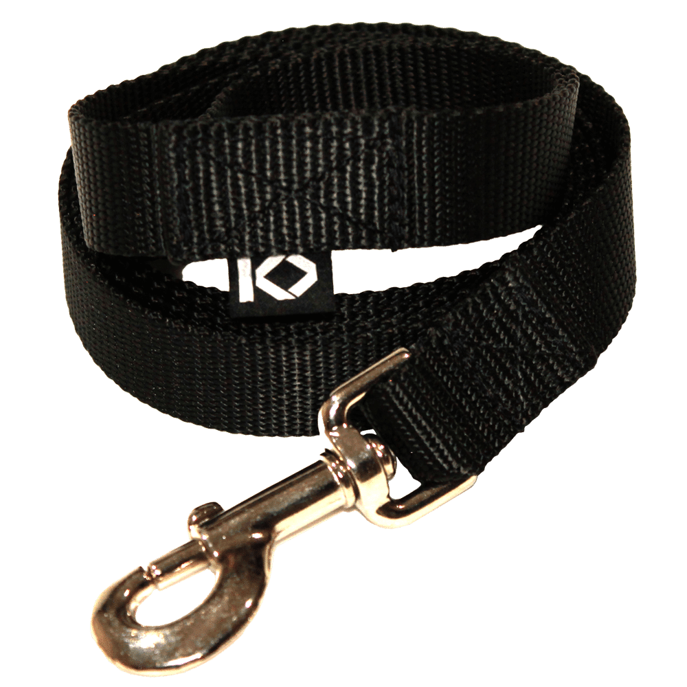 dog-lead